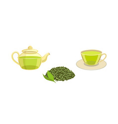 set - green leaf tea teapot cup of tea vector image