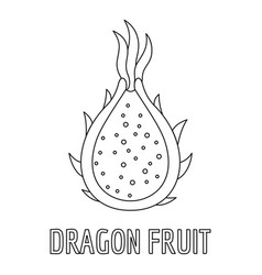 dragon fruit icon outline style vector image