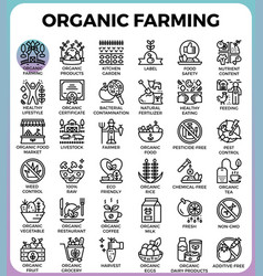 Organic farming concept detailed line icons vector