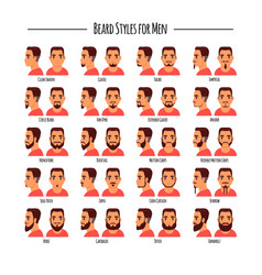 beard styles for men icon set vector image