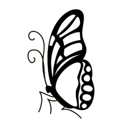 Contour butterfly icon simple style vector