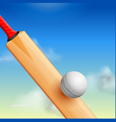 Cricket bat on sports background vector
