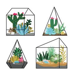 floral terrariums planting vector image