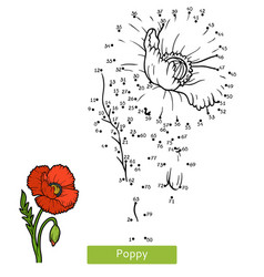 numbers game for children flower poppy vector image