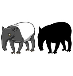 tapir characters and its silhouette on white vector image
