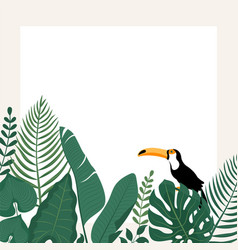 Trendy banner with tropical leavestoucan bird and vector