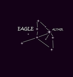 aquila eagle constellation in the night starry sky vector image