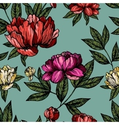 Flowers pions with foliage pattern vector image