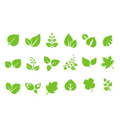 abstract green leaves logo set ecology symbol vector image
