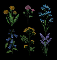 set of embroidery plants on black background vector image vector image