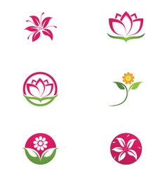 Beauty Lotus Logo Template vector