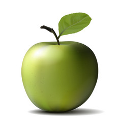 big green apple vector image