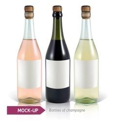 Bottles of champagne vector