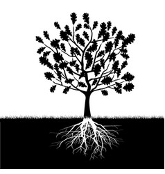 Silhouette of oak tree vector