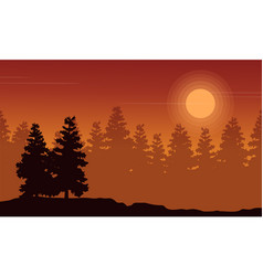 Silhouette of spruce forest at sunset scenery vector