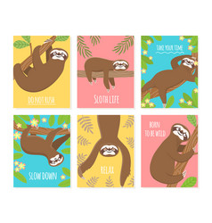 sloth card cute slumber animal sleepy lazy vector image