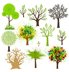 Tree super collection of different styles vector image