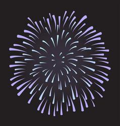 firework on night background anniversary bursting vector image