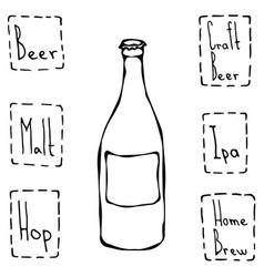 craft beer bottle hand drawn vector image vector image