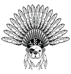 French buldog with tribal Headdress with plain vector image