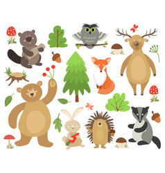 Cute woodland animals beaver fox deer owl bear vector