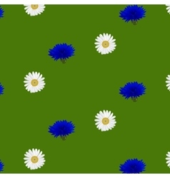 seamless pattern with flowers chamomile vector image