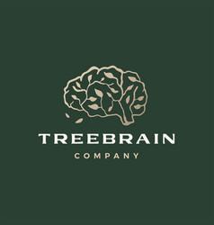 tree brain branch think smart logo icon vector image