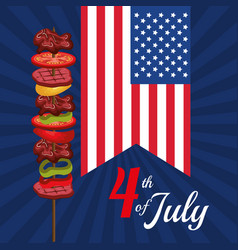 Usa independence day barbeque party vector