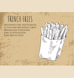 french fries in package poster vector image