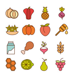 healthy food fresh fruits vegetables and protein vector image