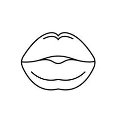 Lip vector