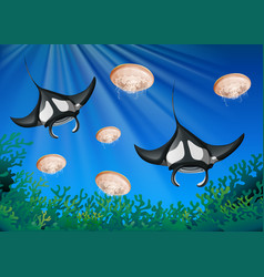 Manta ray and jellyfish under the ocean vector