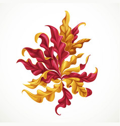 marine red and yellow algae sea life object vector image