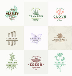 premium quality herbs and spices signs or vector image