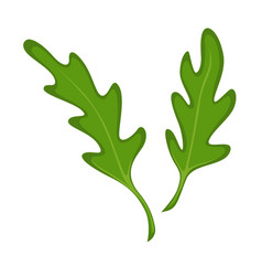 Small green fresh leaves vector