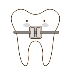 Teeth healthcare dental icon vector