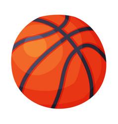 Basketball ball sport equipment vector