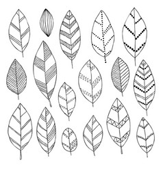 Beautiful black and white set hand drawn doodle vector