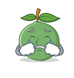 Crying guava mascot cartoon style vector