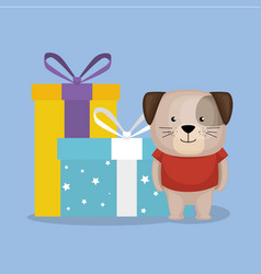 Cute and little doggy with gifts vector