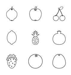 Orchard fruits icons set outline style vector