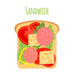 sandwichtomatopeppercheesesalad toast vector image