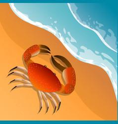 The on a beach theme summer vacation vector