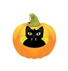 black cat halloween pumpkin vector image vector image