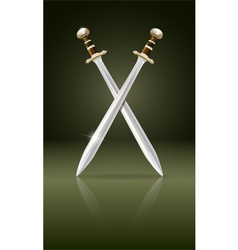 swords vector image vector image