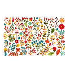 Autumn decorative set berries and twigs vector