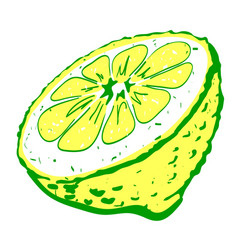 Cartoon image of half melon vector