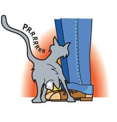 Cat rubbing on pant leg vector