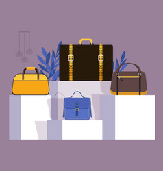 collection bags in fashion store showcase vector image