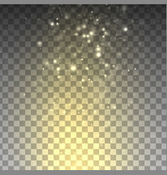 glitter lights effects vector image
